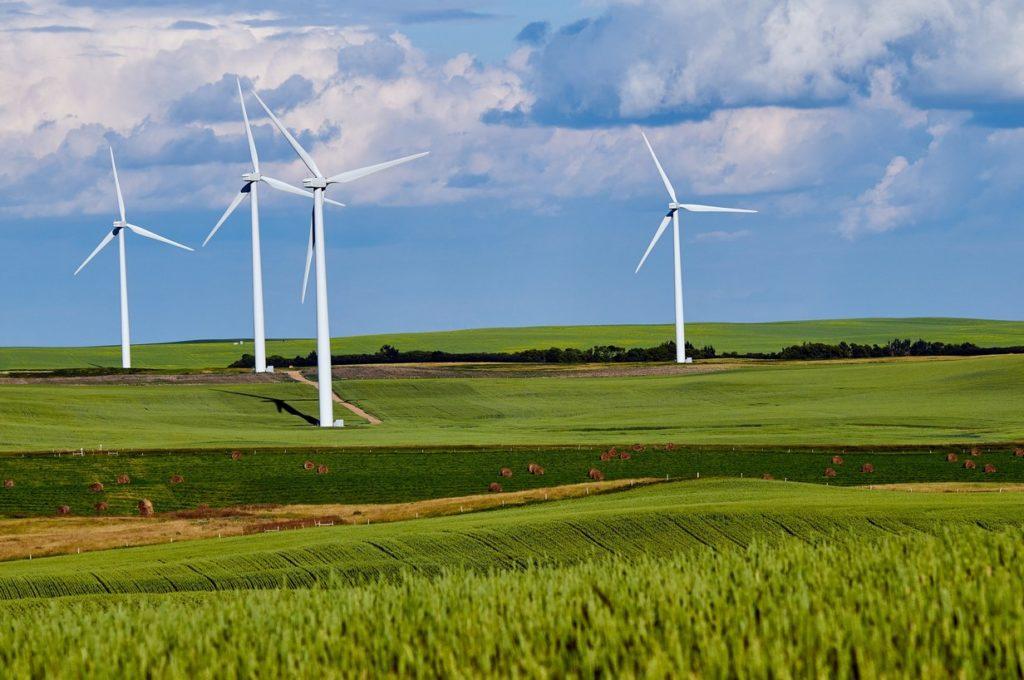Hacer uso consciente de las energías renovables.