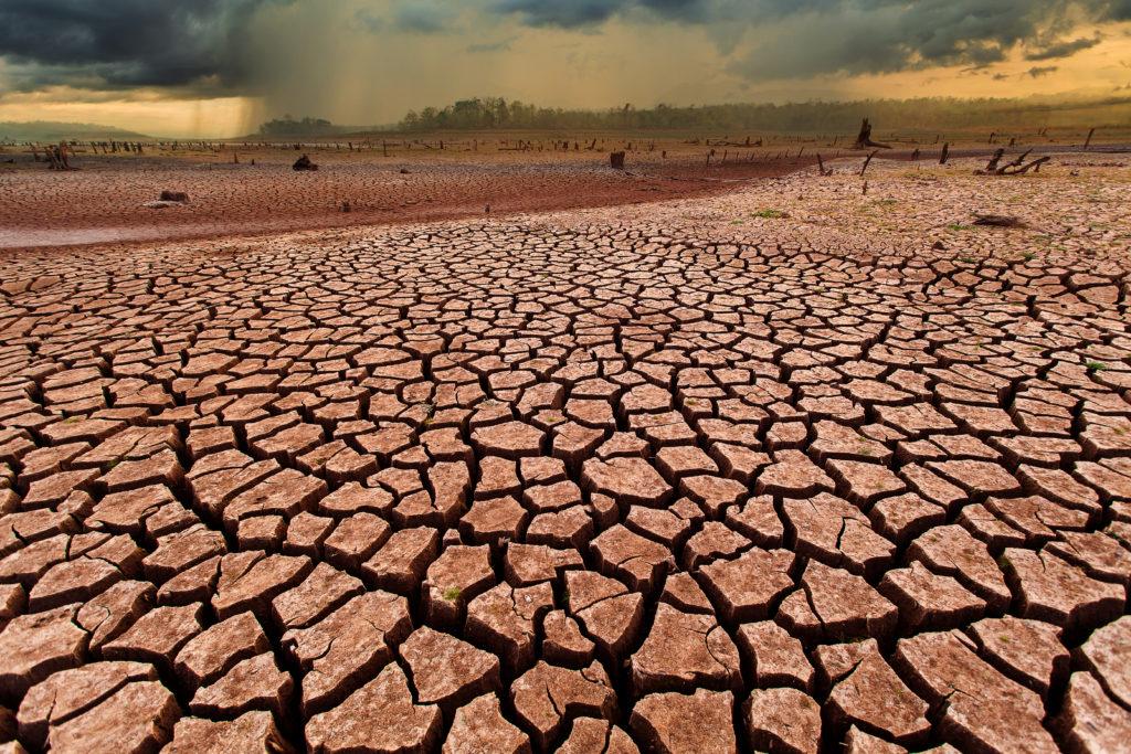 Hay que tomar conciencia acerca del cuidado del medio ambiente.