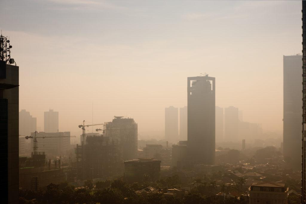 Vivimos en ciudades de alto consumo y gran derroche.