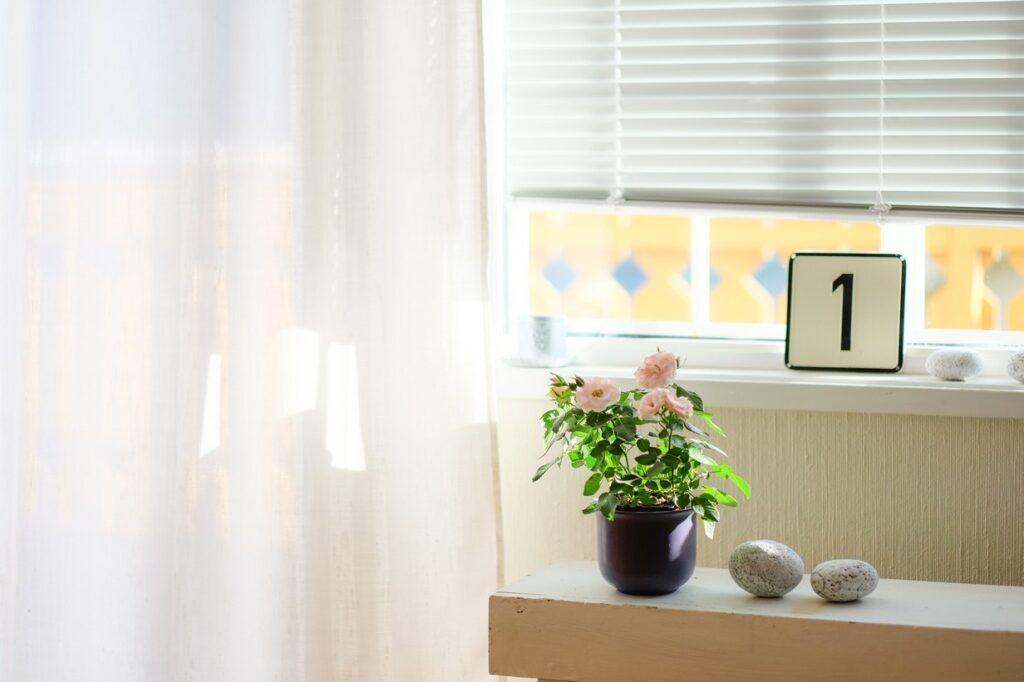 Al cerrar tus persianas puedes reducir hasta un 30% del calor no deseado